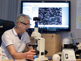 Dunkelfeldmikroskopie